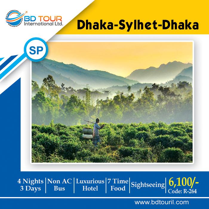 DHA-SYL-DHA (S-Pick)