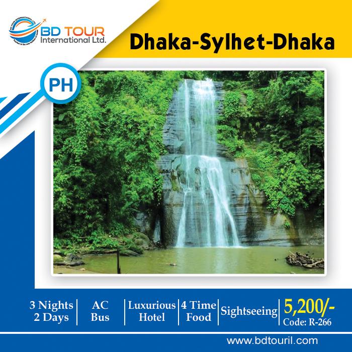 DHA-SYL-DHA (Pick)